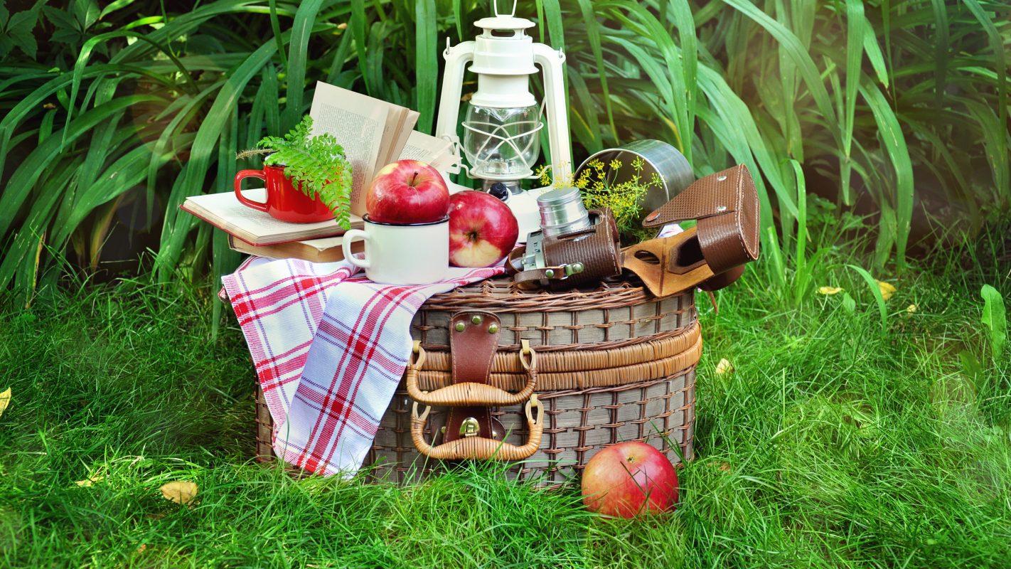 Easy picknick ideen maxima - Picknick ideen ...