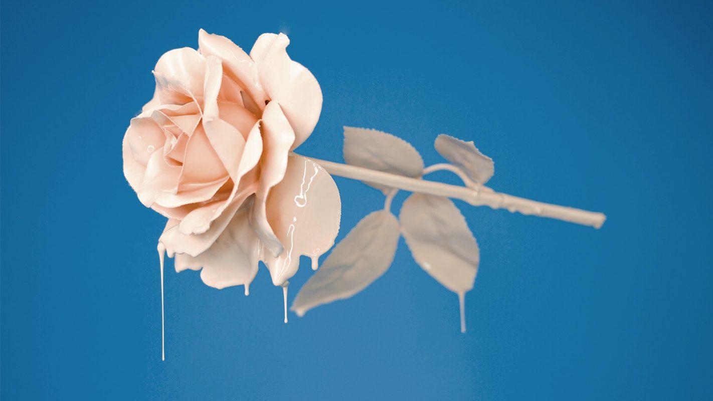es gibt jetzt konservierte rosen die nicht verbl hen. Black Bedroom Furniture Sets. Home Design Ideas